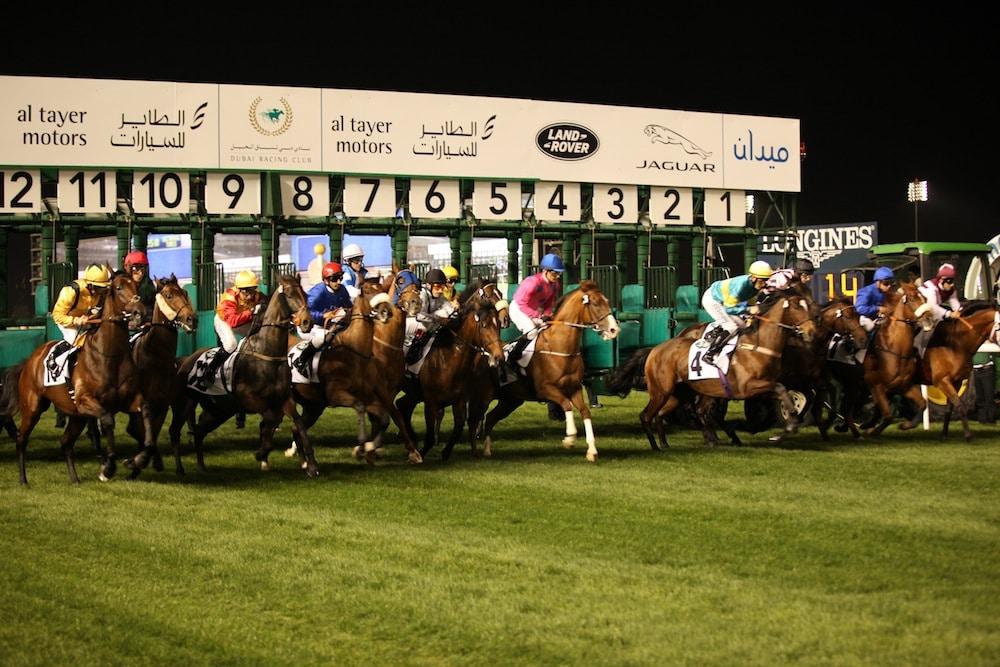 מרוץ סוסים דובאי