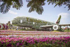 מטוס איירבוס בדובאי מירקל גרדן